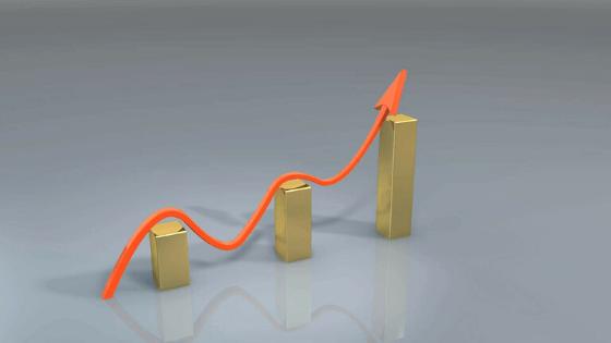 Javni poziv za uvajanje poslovne odličnosti